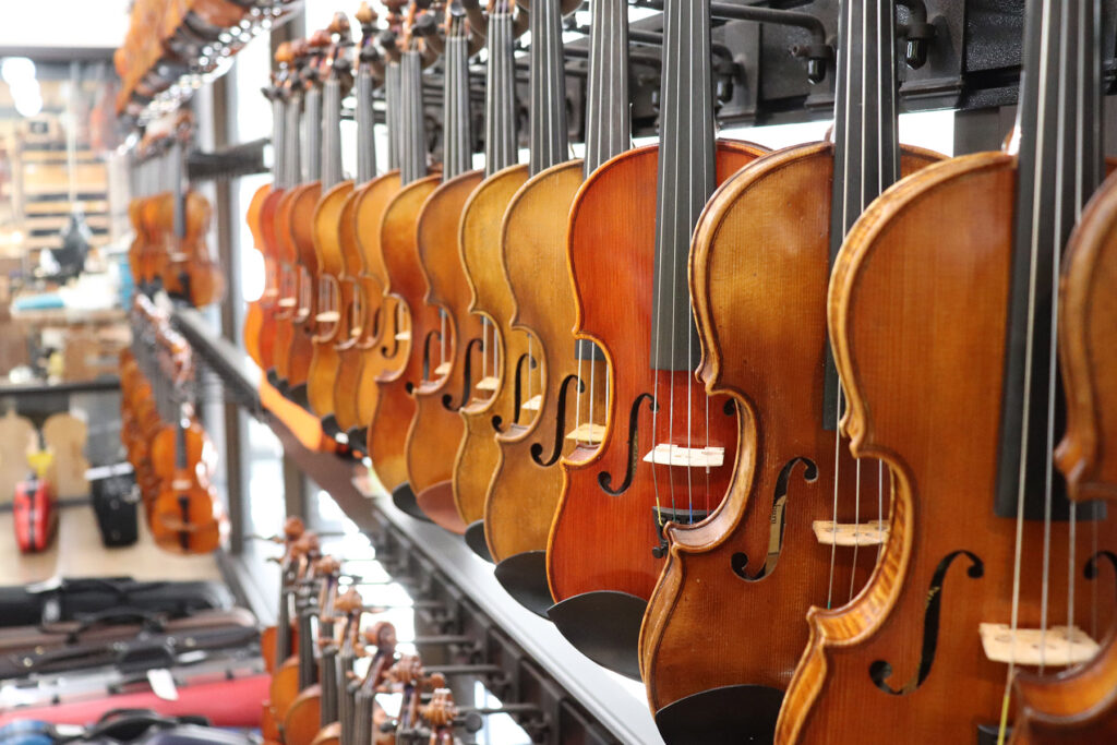 Shop our full line of strings, accessories and cases